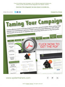 Spider Trainers' Taming Your Campaign infographic email image